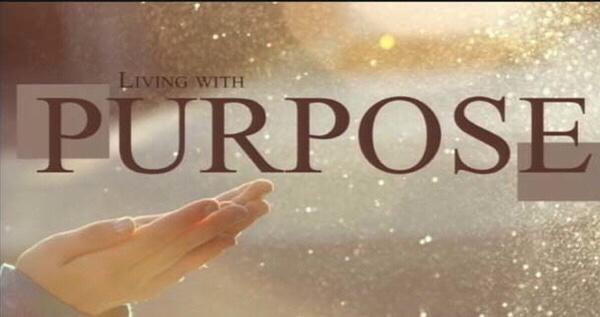 Purpose over Pain